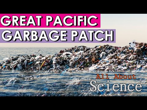 The Great Pacific Garbage Patch Explained! The Effect Of Plastic On The World!