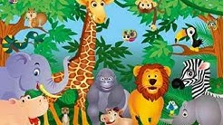 ☛Animal Videos For Kids Giraffe & Parrot ☛ Learn Animals Names For Kids☛ Videos For Kids