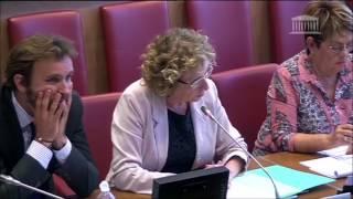 A. Quatennens (FI) interroge la ministre du travail sur ses bénéfices liés à Danone. Elle