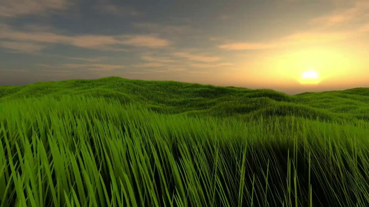Grass Rendering: Geometry-Shader