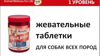 NUTRIVET - профессиональные добавки для собак и котов
