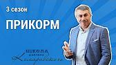 Рахит и витамин D - Школа доктора Комаровского - Интер - YouTube