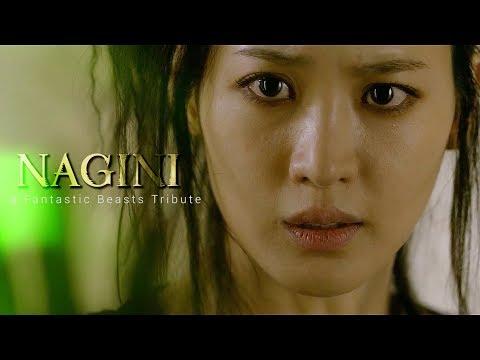 nagini-ii-a-fantastic-beasts-tribute