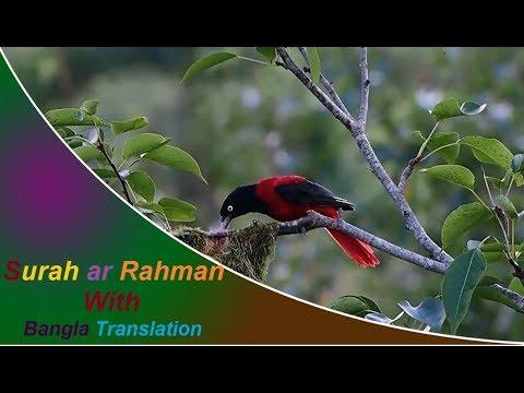 Download Lagu Surah ar Rahman full | মন জুড়ানো সুরে সূরা আর রহমান (আরবি-বাংলা)