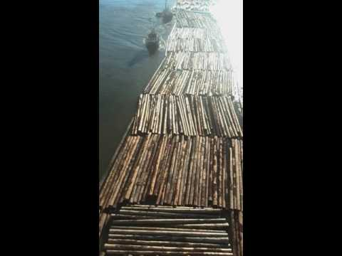 Fraser river tug boat tugging logs