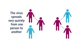 Coronavirus (COVID-19): How You Can Stop the Spread