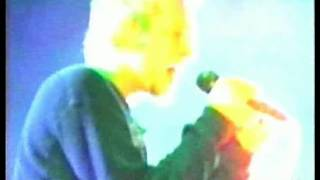 Stone Temple Pilots - Army Ants (Live)