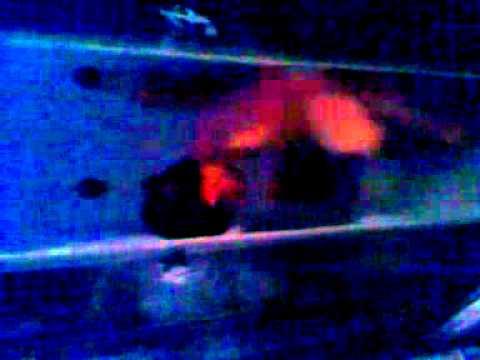 Видео голый мальчик в душе фото 518-235