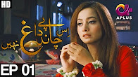 Is Chand Pay Dagh Nahin - Episode 1 Full HD - A Plus ᴴᴰ