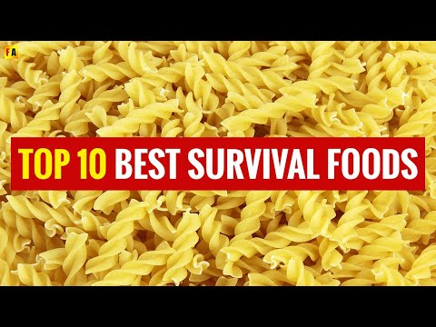 What Is The Best Survival Food With Long Shelf Life?