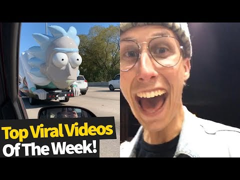 Top 40 Best Viral Videos Of The Month – November 2019 (Try not to laugh)