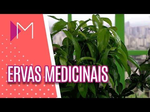 Ervas Medicinais para Alívio das Dores - Mulheres (14/05/18)