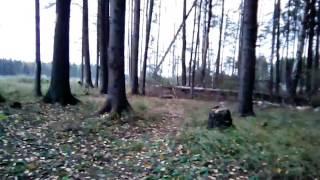 видео Экология Людиновского района