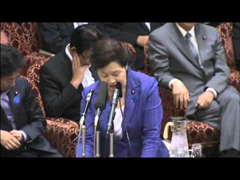 6.13参院予算委(自民党)林芳正posted by skremselio