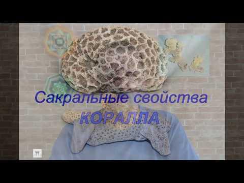 КОРАЛЛ. Сакральные свойства. Литотерапия. Валерий Кузнецов
