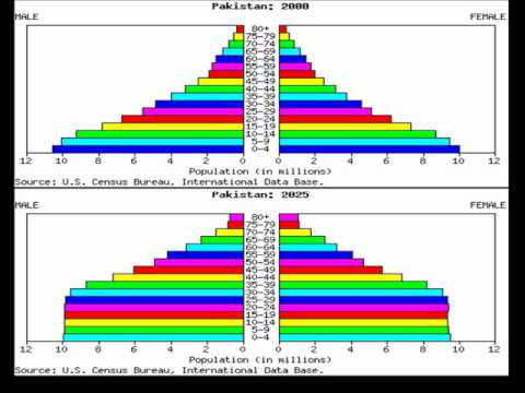 Demographic Transition Model (DTM) and Pakistan