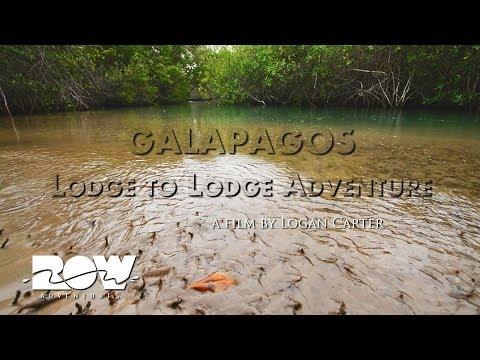 Galapagos Vacation: Lodge to Lodge Adventure