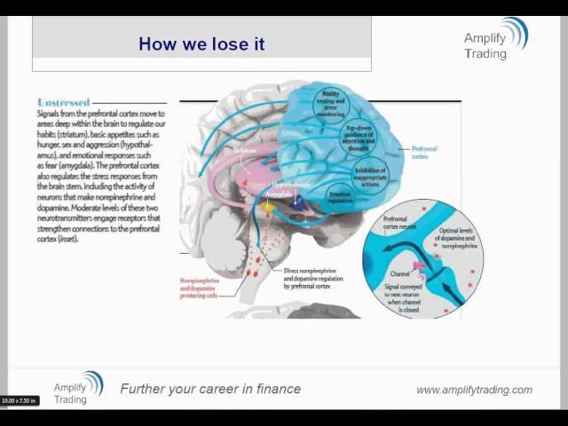 Trading psychology: Understanding self-awareness