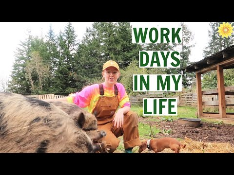 WORK DAYS ON OUR OREGON FARM | CIDER PRESSING, GARDENING, CANNING & MORE!