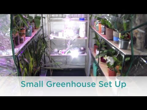 Small Orchid Greenhouse Set Up