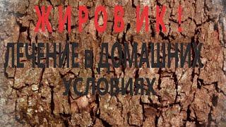 Как Избавиться от ЖИРОВИКА, ЛИПОМЫ, АТЕРОМЫ Быстро и Безболезненно...