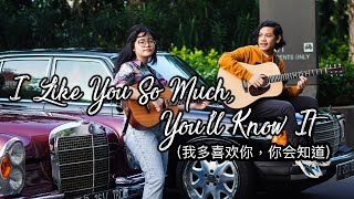 Download I Like You So Much, You'll Know It (我多喜欢你,你会知道) - A Love So Beautiful OST|Eng Cover by Cinta & Nino