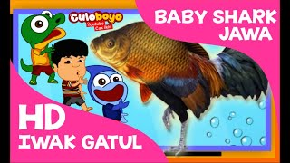 Baby Shark Versi Jawa Iwak Gatul Kualitas HD Culoboyo Cover Baby Song