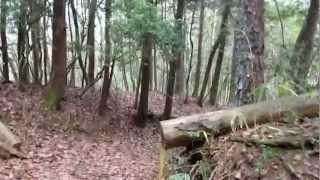 東海自然歩道記録映像(H25.2.10)恵那ルート・姥石石仏群