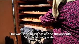 Drying apricots with solar technology in Tajikistan