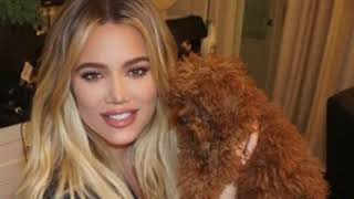 Khloe Kardashian & True Thompson Show Off Their Cleveland Christmas Tree
