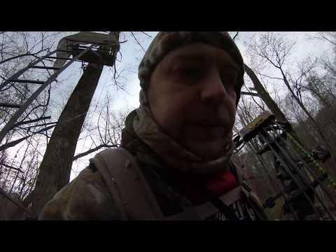 ohio public archery deer hunt