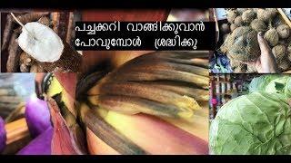കടയിൽ പോവുന്നതിനു മുൻപ് ഇത് ഒന്നു  കണ്ടു നോക്കൂ || Tips on picking the best Coconut,Kappa(yucca....