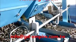 Fastener Packing Machine/Screw Counting Packing Machine/ Bolts Counting Machine