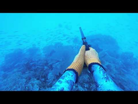 spearfishing Rob Allen Guns 2016 New-Calédonia