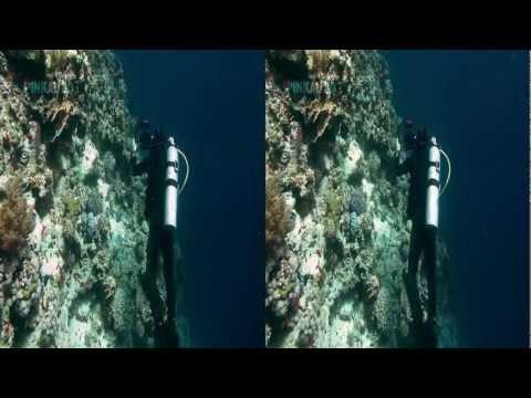 Oceandive 3D - Pinkau 3D Entertainment