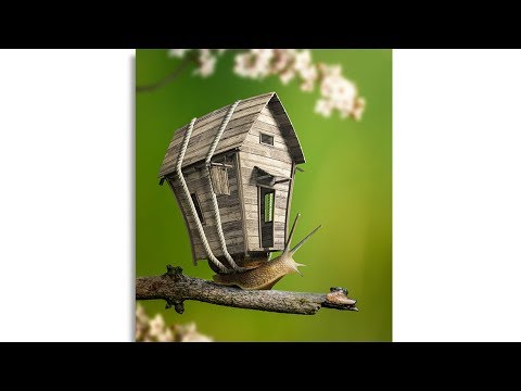 Snail House - Photo Manipulation Tutorial