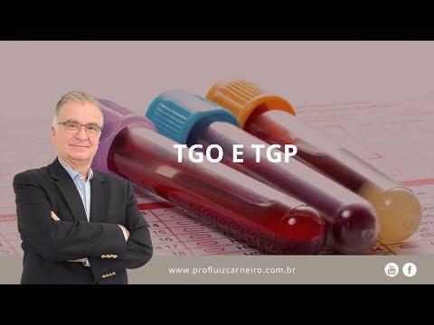 Saiba o que é: TGO e TGP   Prof. Dr. Luiz Carneiro