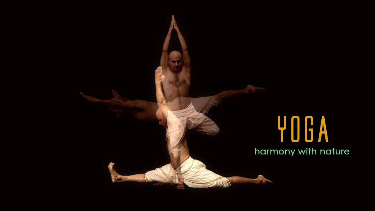 Yoga: Harmony with Nature - Chinese (Promo) - YouTube