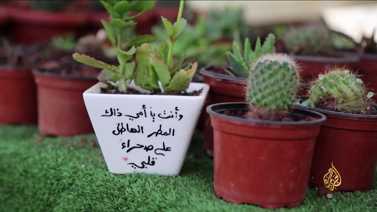 الجزيرة:هذا الصباح-صبارة.. مشروع طامح لمهندسة من غزة