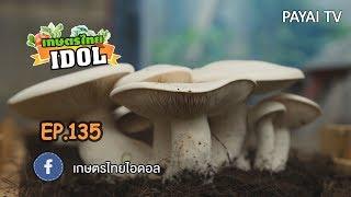 เกษตรไทยไอดอล | EP.135 ตอน ฟาร์มเห็ดเพชรบูรพา (เห็ดมิลกี้ เห็ดเยื่อไผ่) | 17 ส.ค. 61