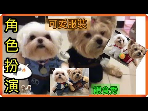 (角色扮演)狗奴才,之寵物服裝,餵食秀 lovely cosplay  dog Cute clothing