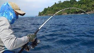 РЫБАЛКА В РАЮ!!! Что ловится на спиннинг в Тихом океане?! Первая серия.