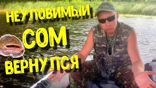 ЛОВЛЯ СОМА НА КВОК В КИЕВЕ неуловимый сом вернулся рыбалка на сома речная ракушка беззубка