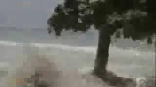 breaking tsunami in samoa 2009 09 29 100s dead 100s washed away