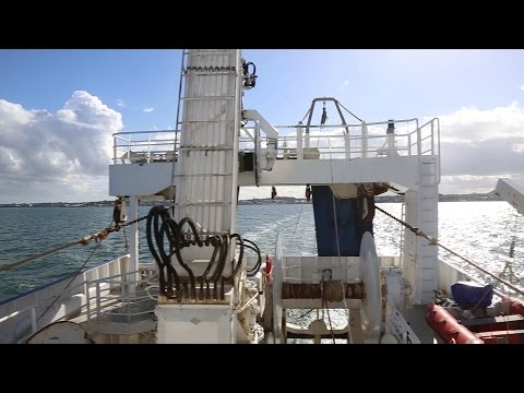 Pelagic Fishing For Oily Fish | 09