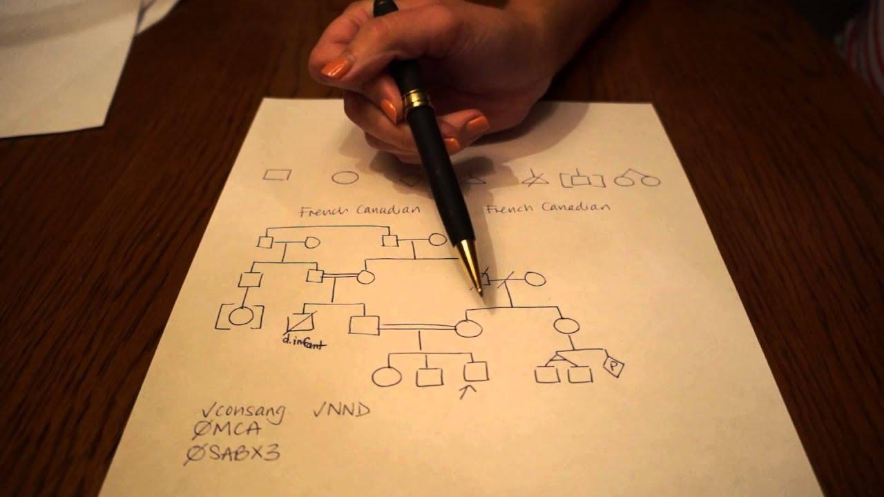 how to make a pedigree