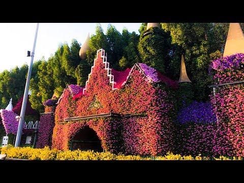 Очень Красивый Парк  Цветов  в Дубае  Miracle Garden