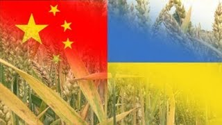 China buys 5% of Ukraine to feed booming population