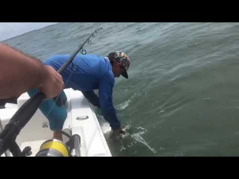Best Spring Fishing On Hilton Head Island With Native Son Adventures And Captain Byron Sewell.