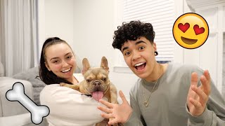 SURPRISE! We Got A New Puppy!!